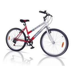Bicicleta Baccio Alpina Lady R.24